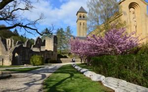 MannenWeekend: SamenWerken en Krijgerschap @ Bois Le Comte | Florenville | Wallonie | België